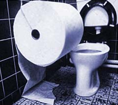 A whole lot of Toliet Paper